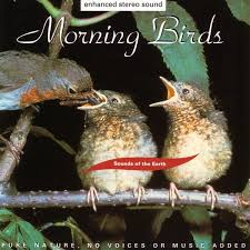 טיפת שמן דיסק - Morning Birds